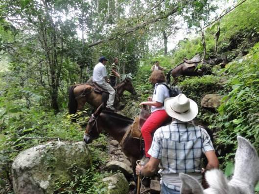 Rumbo a Lomalarga, en Cundinamarca.