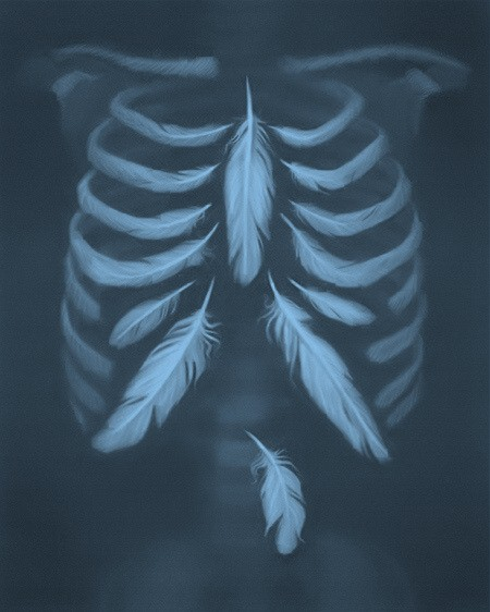 huesos-y-plumas
