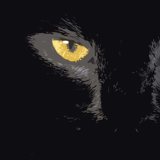 Gato en la oscuridad